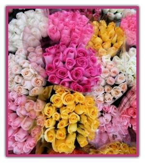 El lenguaje de las flores y significado de colores en - Significado de los colores de las rosas ...